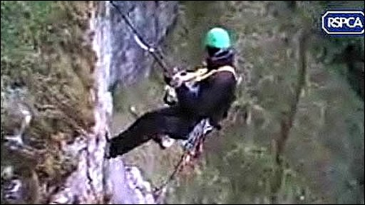 Image shows an inspector abseiling down a rock face