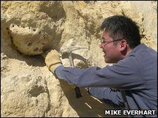 Dr Shimada excavates the jawbone