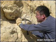 Dr Shimada excavates the jawbone