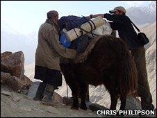 Porters in the Wakhan Corridor load gear onto yaks