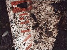 Guinness measuring chart fragment found near the skeleton