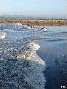 Severn Bore (Image: Sustainable Eel Group)