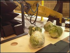 Cauliflower picking robot, NPL