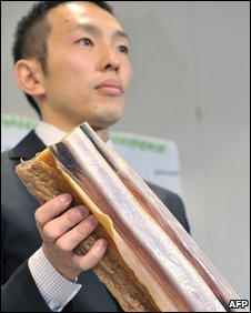 Junichi Sato displays a chunk of whale meat in Tokyo, Japan (15 May 2008)