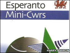 Mini-cwrs book