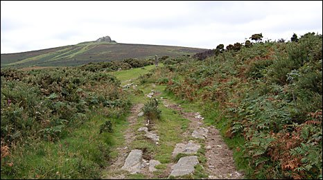 The granite tramway at Haytor