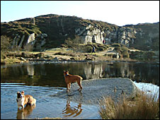 The old quarry at Haytor