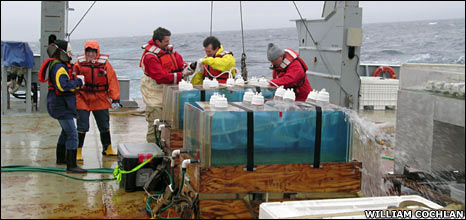 Scientists on ship deck
