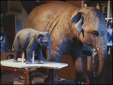 Bronze sculpture of elephant to be unveiled in Chester