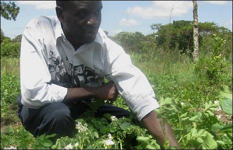 Kenyan potato farmer Zack Matere