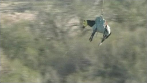 Horse Helicopter Rescue Rescued Horse