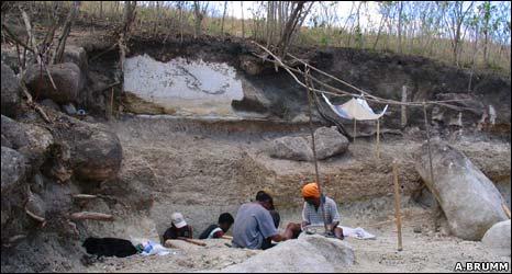 Dig site (A Brumm)