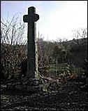 St Gadula's Well, Ashburton