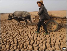 A woman drives a cart across a dried-out pond in Luliang, southwest China, on 22 March 2010