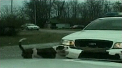 Dog attacks police car in Tennessee