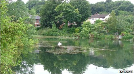 One of the mill ponds at Greenfield Valley, Holywell, by Sashyazz