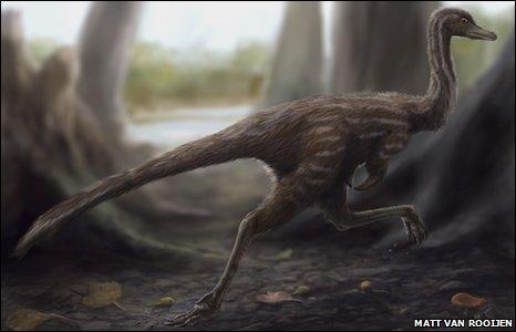 Roadrunner dinosaur Xixianykus zhangi