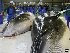 Minke whales at a processing plant in Kushiro, Japan (file image)