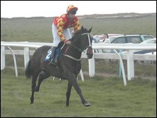 Horse racing at Les Landes