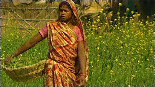 Agricultural worker in India