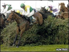Spruce fence at the Grand National