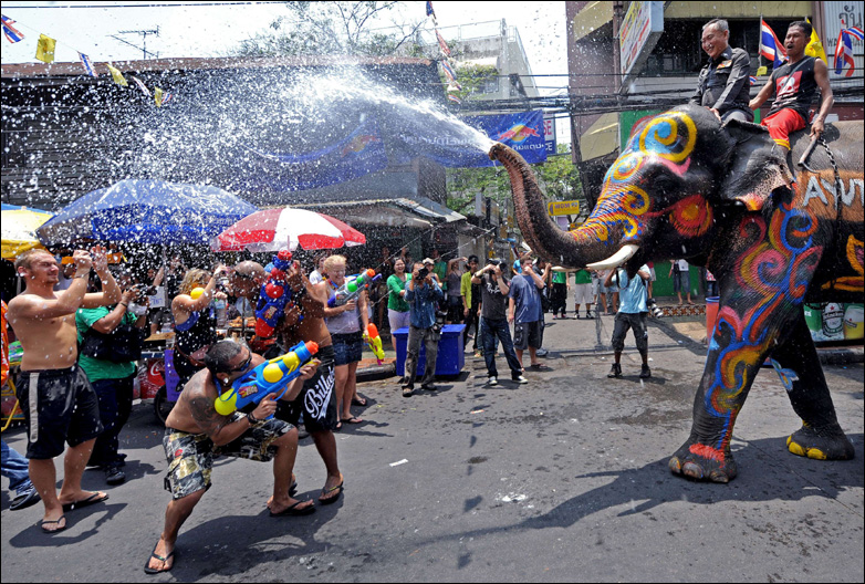 Tourists spray an elephant with wate