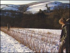 Sian Fromant's Welsh Fruit Stocks farm