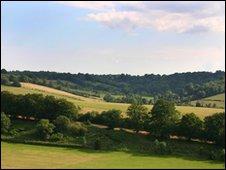 North Downs, Surrey