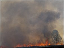 Cannock Chase fire: Pic by John Cartlidge