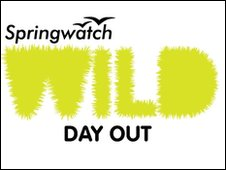 Springwatch Wil Day Out