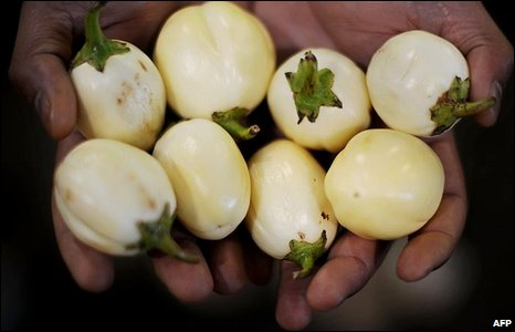 A fruit seller holds six-day old egg plants from Ghana at a market in London [21 April 2010]