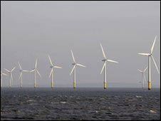 General view of wind turbines