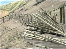 Damaged fencing