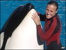 File pic of Dawn Brancheau and an orca at SeaWorld