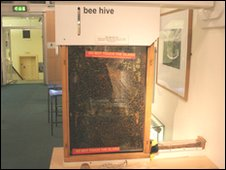 Bee hive at Hereford museum