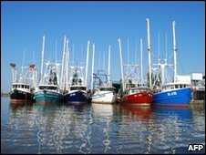 Idled shrimp boats in the dock of Venice, Louisiana