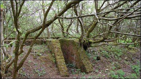 Overgrown blast shelter