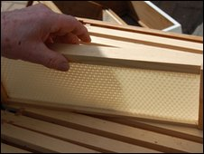 Preformed wax sheets inside a hive frame