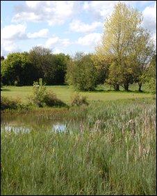 Area of Iris Brickfield