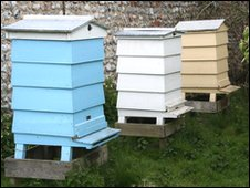 Bee hives at Felbrigg Hall, Norfolk