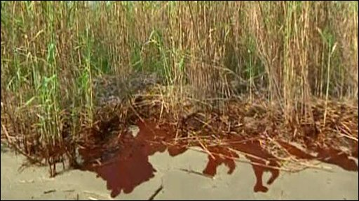 Oil reaches Louisiana shoreline