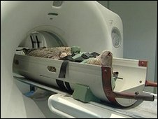 Lamb in an MRI scanner