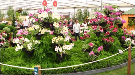 Eric Young Orchid Foundation Exhibit, photo: BBC