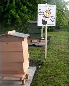 Beehives at Dunham Massey