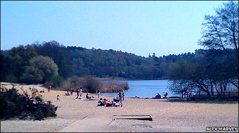 The beach at Frensham Pond