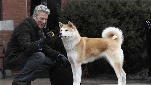 movie review hachinko Here is the amazing and true story of the japanese hachiko dog, or hachi as was his nickname, the real dog behind the popular movie: hachiko - a dog`s tale home.