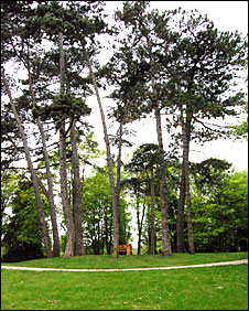 Castle Hill Park, Calne