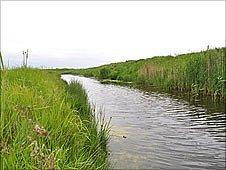 River Crouch runs through Marsh Farm Country Park