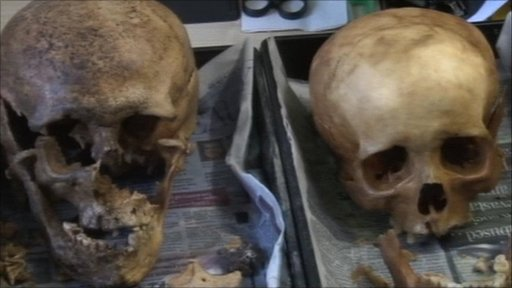 Skulls belonging to two of the eleven skeletons found in Gainsborough