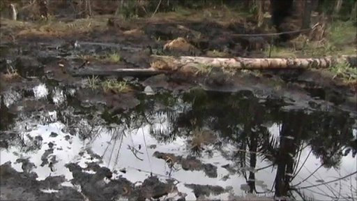 Oil in Niger Delta
